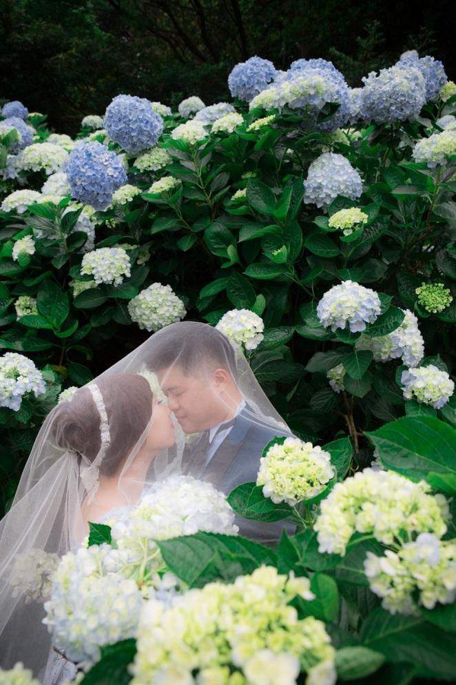 繡球花海婚紗照-台北婚攝伍哥